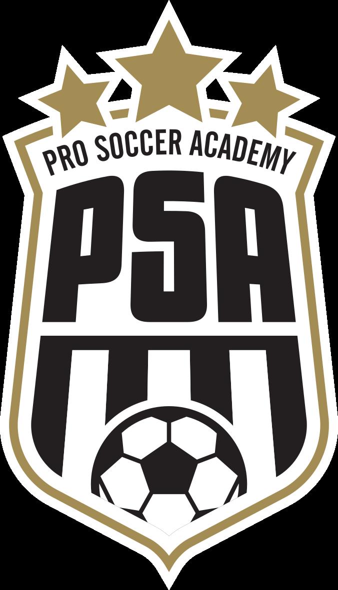 Pro Soccer Academy
